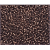 Seedbead 10/0 Black Diamond Copper Line